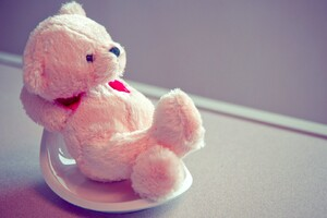 Pink Teddy Bear Wallpaper