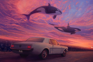 Place Where Whales Fly Wallpaper