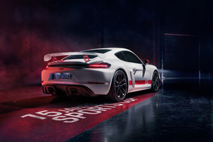 Porsche 718 Cayman GT4 Sports Cup Edition 2019 4k