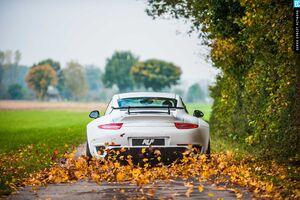 Porsche 911 Autumn