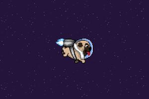 Pug Dog Minimalism