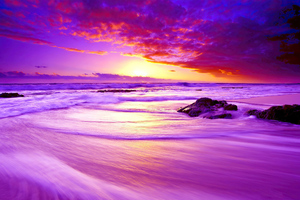 Purple Beach Sunset 4k Wallpaper