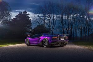 Purple Lamborghini Aventador Rear 5k