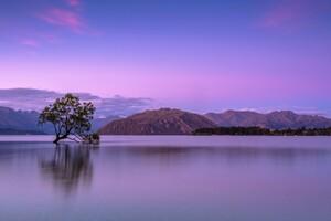 Purple Sky Mountains 5k