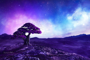 Purple Tree Stories Wallpaper