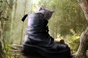 Puss In Boots 2 Movie Wallpaper