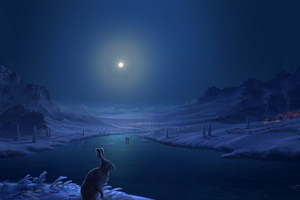 Rabbit Frozen Lake Dark Night