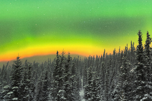 Rare Orange Aurora Above A Snowy Forest 5k Wallpaper