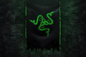 Razer Logo Green 4k