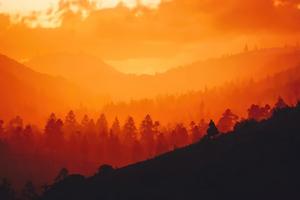Red Dead Redemption 2 Sunset Time 8k