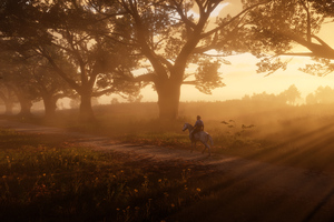 Red Dead Redemption 2 The Path 5k Wallpaper