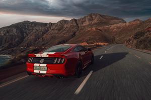 Red Ford Mustang 50 Gt Race Rear 5k Wallpaper