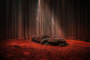 Red Stones Wood Light Beams 4k Wallpaper