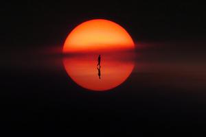 Reflection Of Solitude Wallpaper