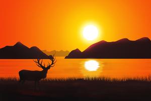 Reindeer Landscape Scenery Wallpaper