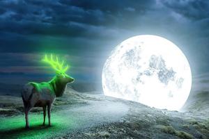 Reindeer Magical Moon Wallpaper