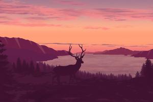 Reindeer Minimalist Call Of Sunset 4k Wallpaper
