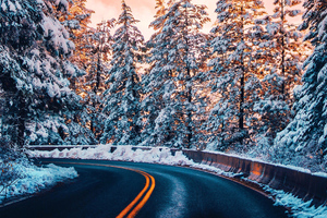 Road Trees Winter 4k Wallpaper