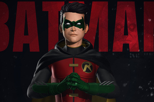 Robin Batman Family Wallpaper