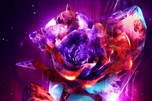 Rose Abstract 4k