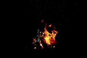 Running Flame In Dark Forest Wallpaper