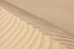 Sand Dunes In Algeria