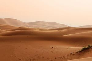Sand Dunes Of Morocco Wallpaper
