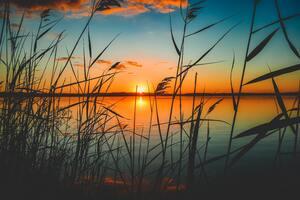 Scenic View Of Lake During Sunset 5k Wallpaper