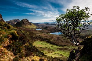 Scotland Trees Mountains Lake Wallpaper