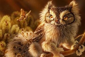 Screech Owl 4k Wallpaper