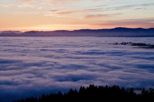 Sea Of Clouds 4k 5k Wallpaper