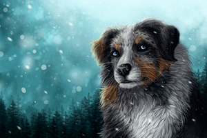 Secret Santa Dog Snow Wallpaper