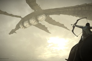 Shadow Of The Colossus Collectors Edition Wallpaper