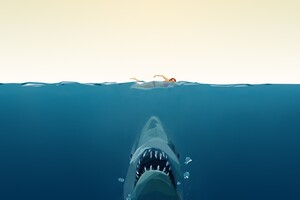 Shark Minimalism Art Wallpaper