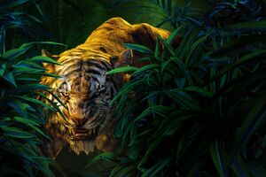 Shere Khan The Jungle Book Movie Wallpaper