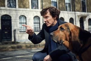 Sherlock Season 4 Wallpaper