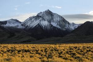 Sierra Nevada Range In Summer Wallpaper