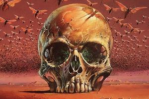 Skull Bugs 4k Wallpaper