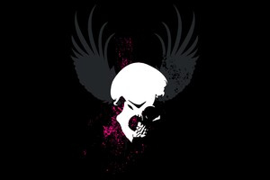 Skull Grunge Wings Dark