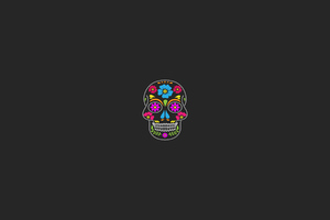 Skull Minimal Art Wallpaper