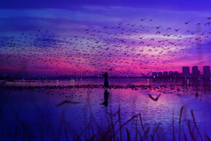 Sky Is The Stage And Birds Sing Wallpaper