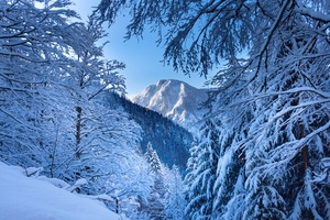 Snow Alps Austria 5k Wallpaper