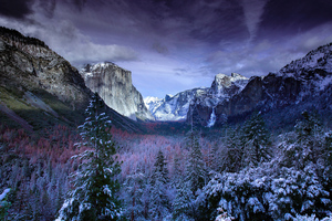 Snow Forests Yosemite Scenery 4k Wallpaper