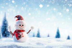 Snowman 8k