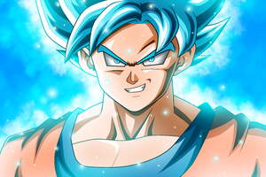 Son Goku Dragon Ball Super 12k