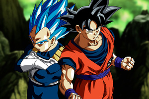 Son Goku Vegeta In Dragon Ball Super 5k