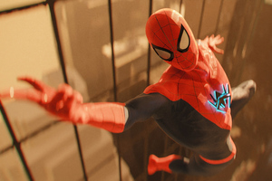 Spider Man Catch Up