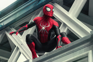 Spider Man King Of Queens