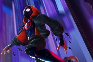 Spider Man Miles 2020 Wallpaper