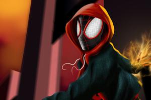 Spider Man Miles Hoodie Wallpaper